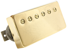 Lightly Aged Gold Covered Humbuckers